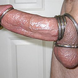 shaved and rings